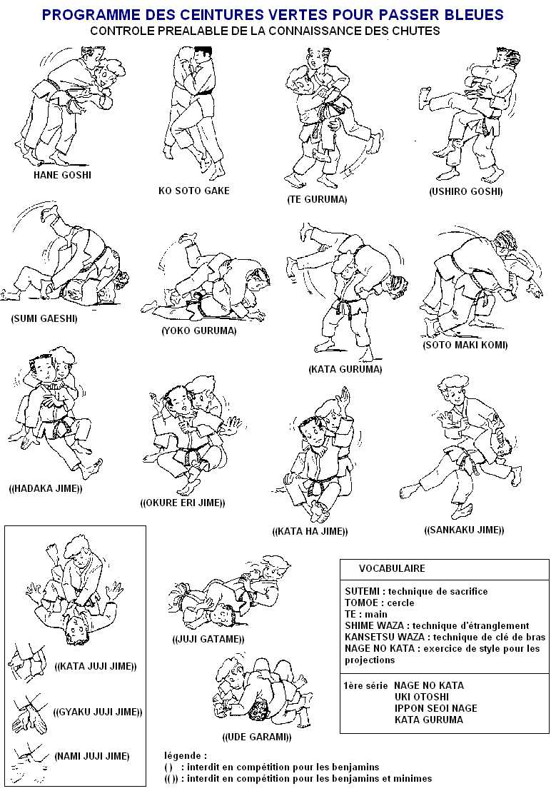 passage de grade judo ceinture bleu,ceinture judo blanche et rouge,ceinture  judo blanche 55cbc9af857